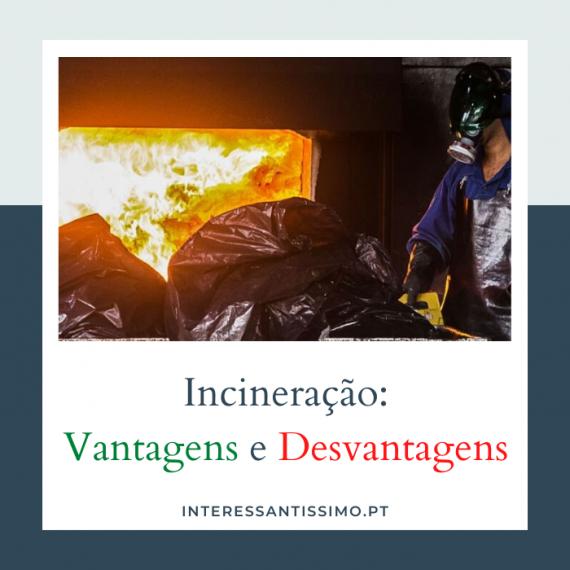 as vantagens e desvantagens da incineração
