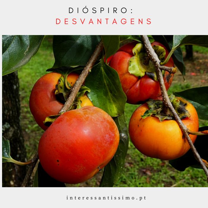 desvantagens do diospiro