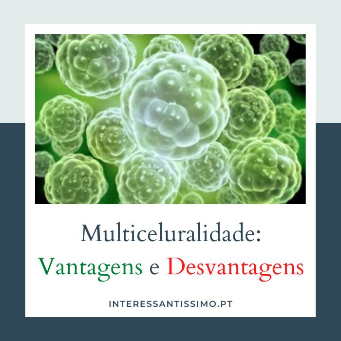 as vantagens e desvantagens da multiceluralidade