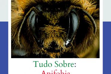aprenda tudo sobre a apifobia