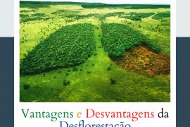 Vantagens e Desvantagens da Deflorestação
